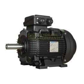 MS3-200L 4-pol 30KW 400/690V B3