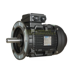 SWE160L 4-pol 15KW 400/690V B5